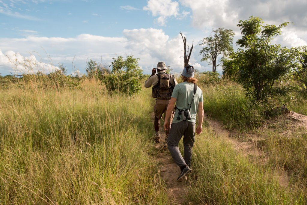 Exploring the bush on foot gives you an entirely unique experience of the wilderness and its animals. Our expert guides will accompany you as you track wildlife through pristine bush, offering you the opportunity to see a vast array of smaller flora and fauna that are often overlooked whilst on a game drive. Walking safaris allow you to touch, breathe and truly immerse yourself in the beauty of what nature has to offer.