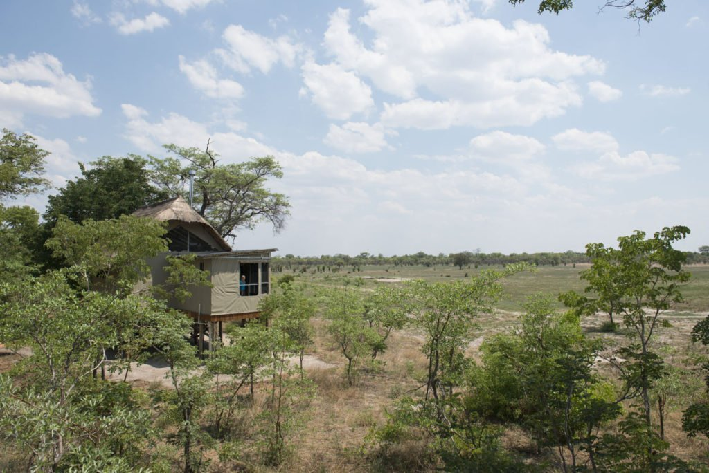 From hunting ground to National Park: the story of Zimbabwe's Hwange National Park