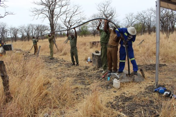 5 Conservation Projects In and Around Hwange National Park 2