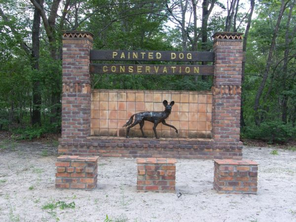 5 Conservation Projects In and Around Hwange National Park 4