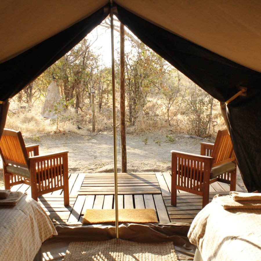Bedouin Bush Camp Package