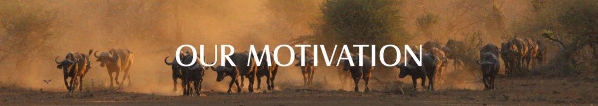 Hideaways | Our Motivations