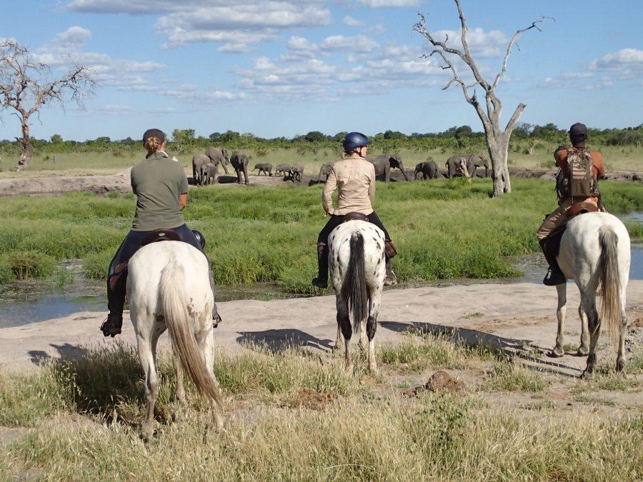 Varden Horseback Safaris