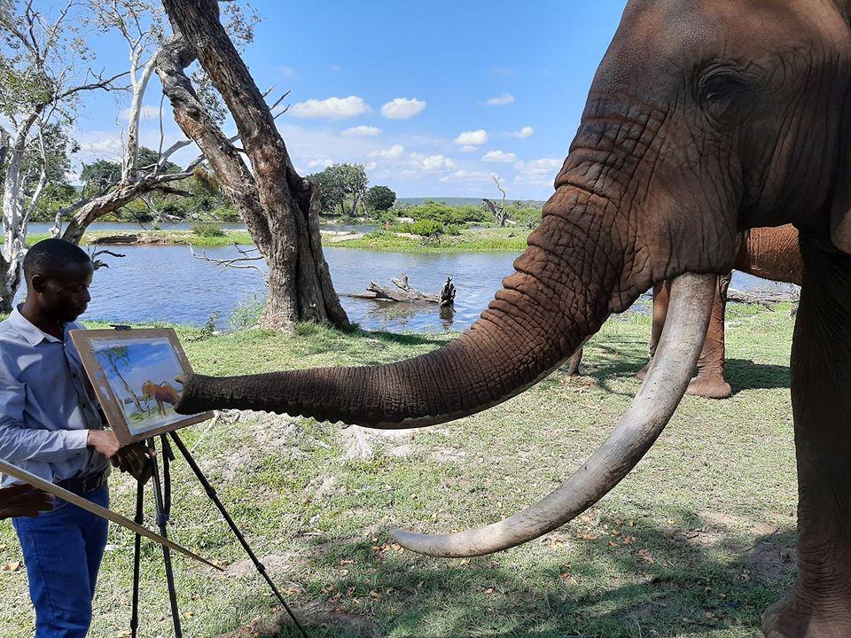 Art of Africa - Victoria Falls