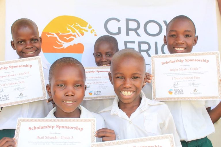Grow Africa Project Ruzivo