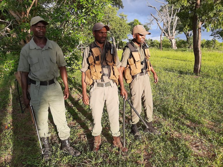 Hwange Anti-Poaching Units