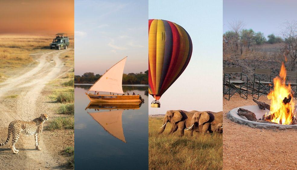 In your Element Safari Experiences
