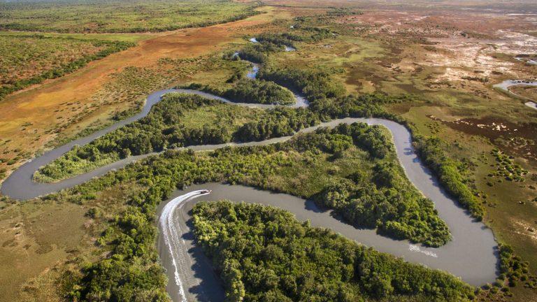 Rio Azul Mangroves