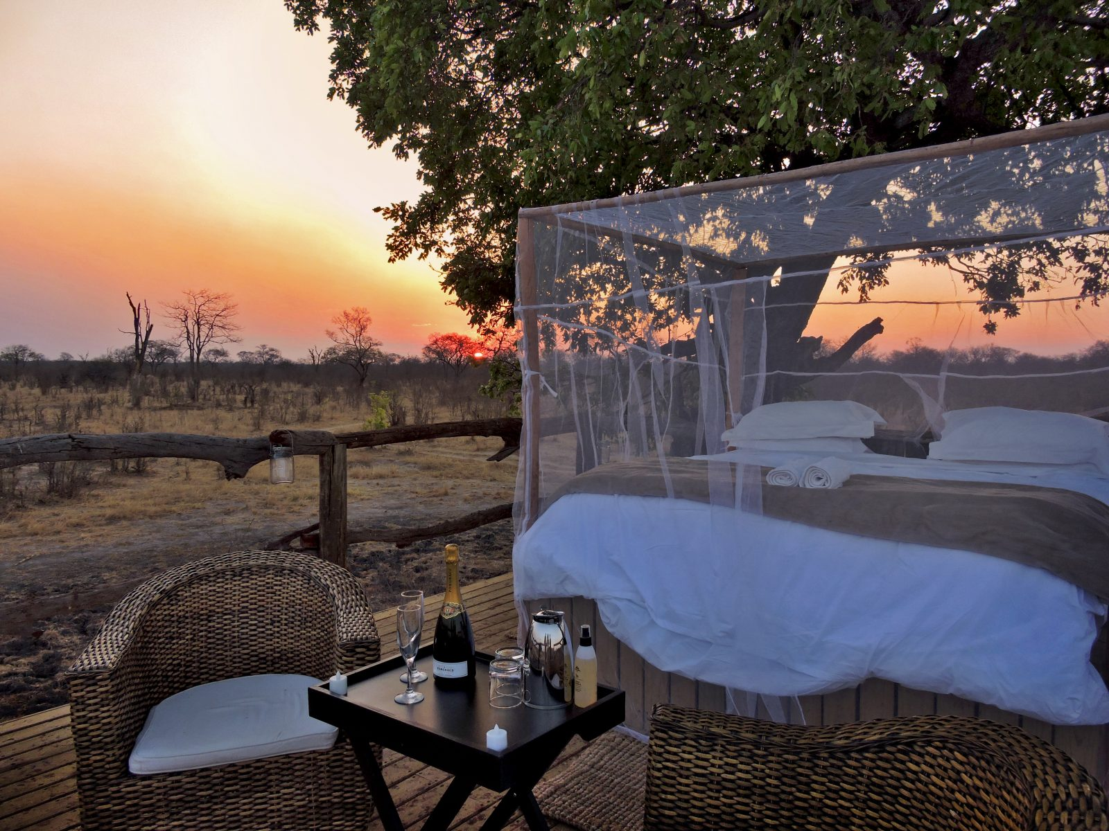 WATCH Beyond the Lodge | Episode 4: Elephant's Eye, Hwange 1