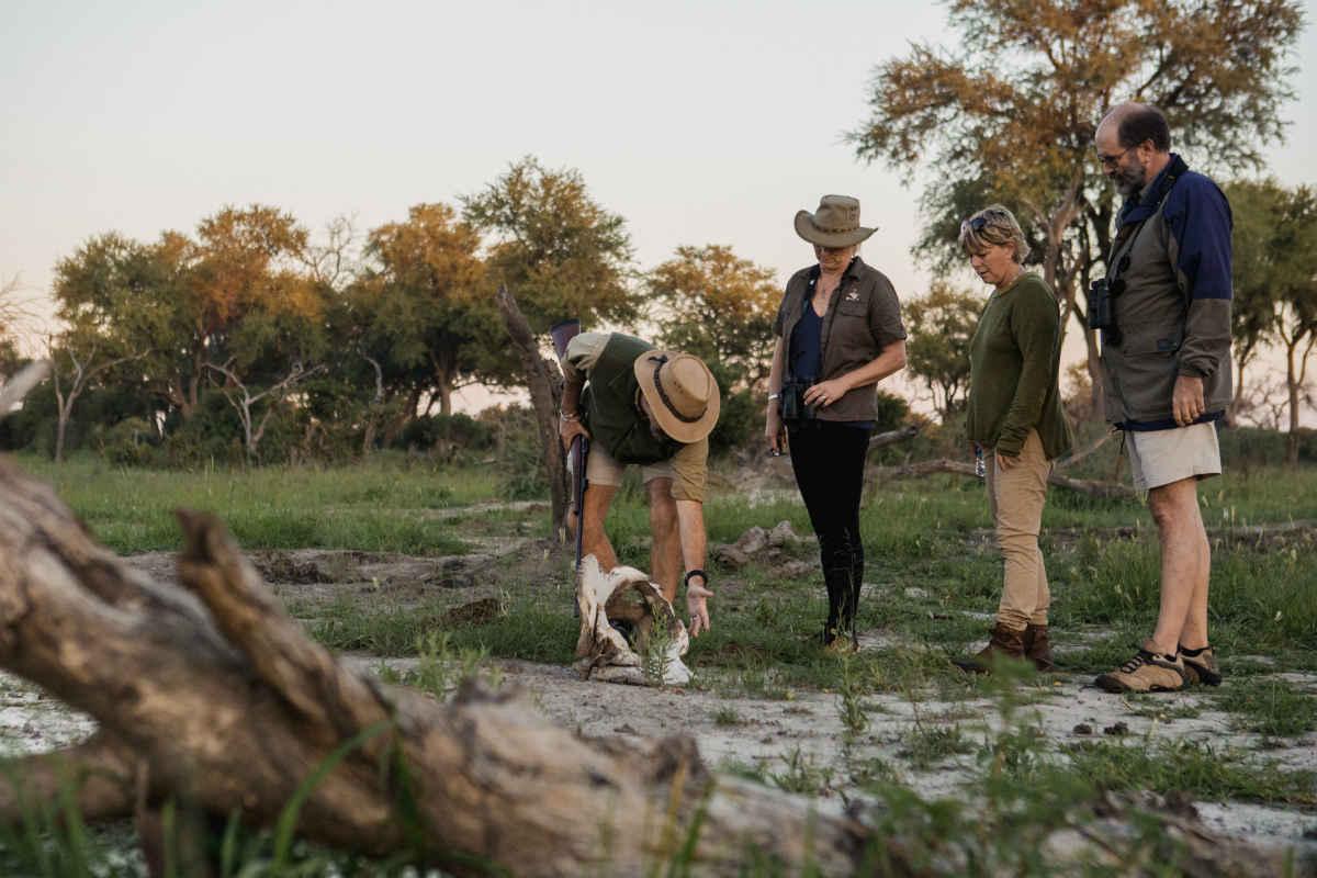 Guest Review: Walking Safaris with Mogotlho 5