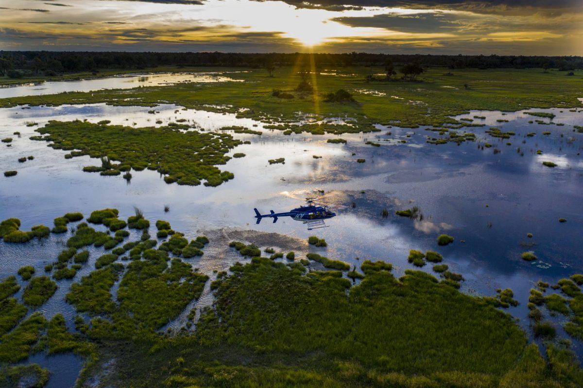A Private Viewing of Wildest Botswana: Mogotlho Safari Lodge 11