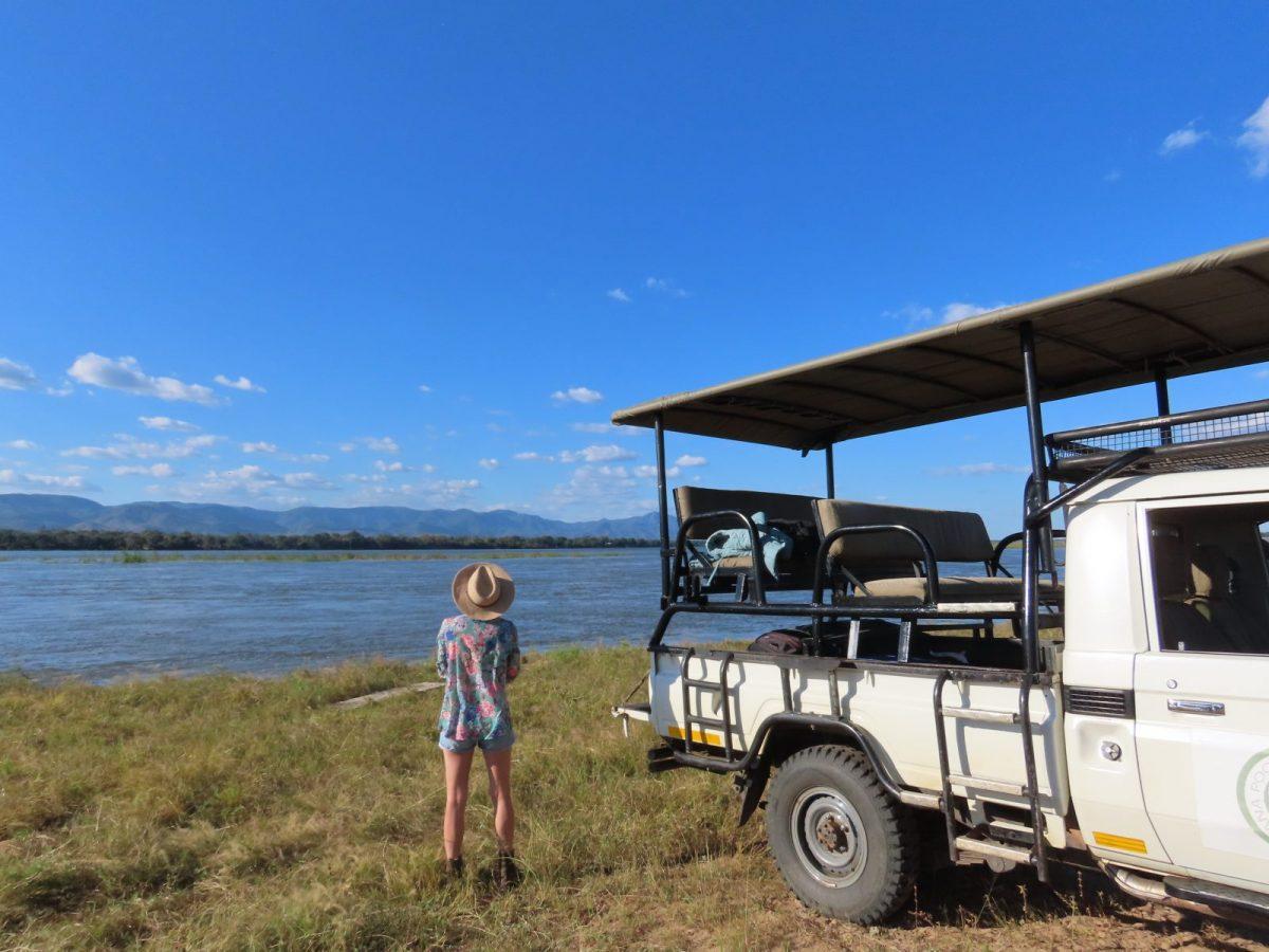 Mana Pools National Park: Where Dreams Come True 10
