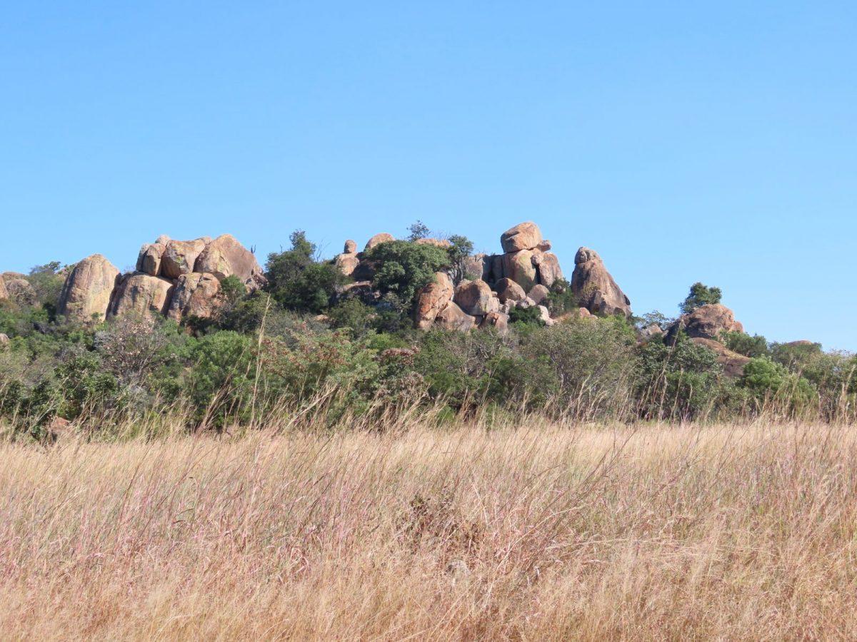 Shashani Matobo Hills: In the Footsteps of Giants 9
