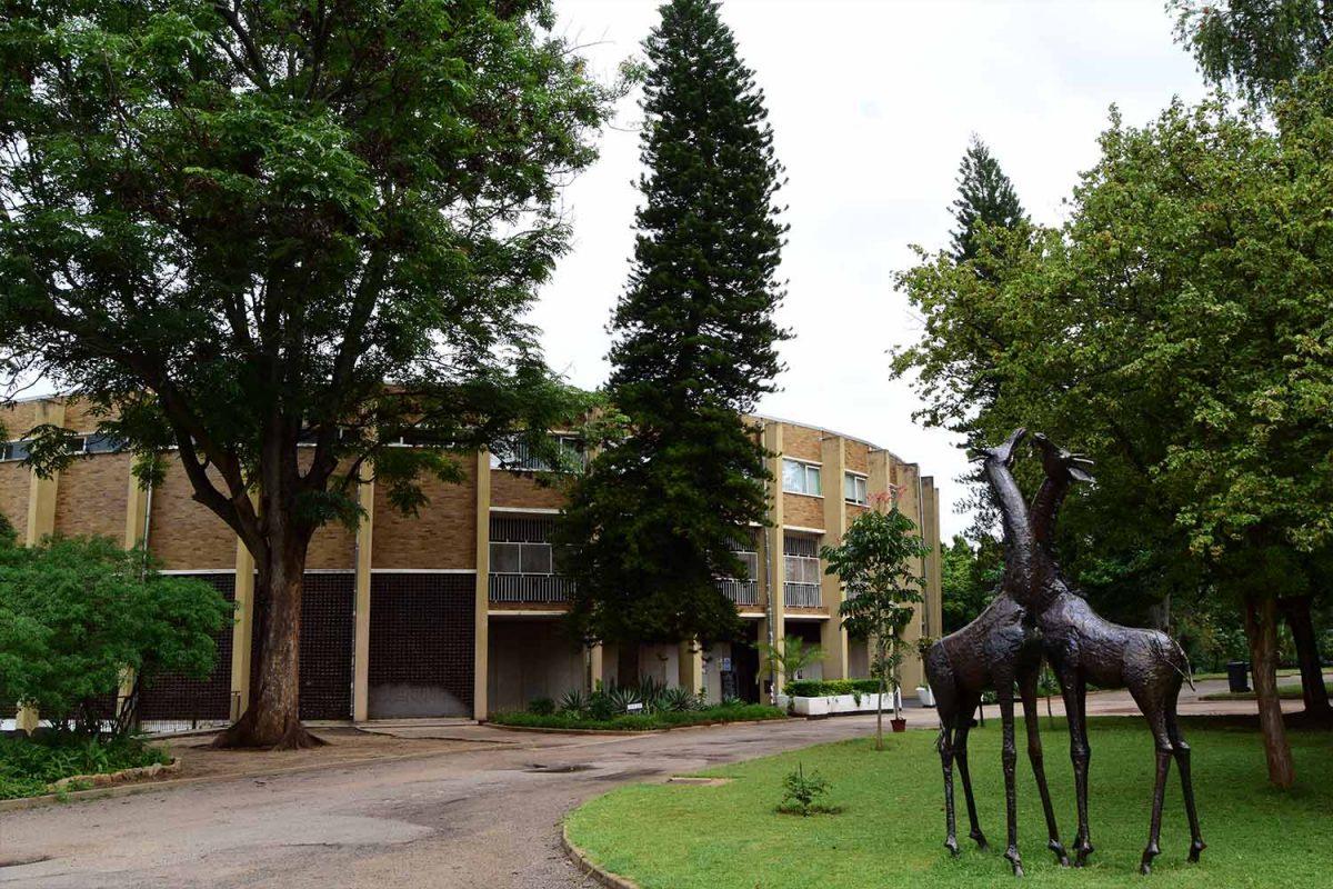 Bulawayo, Zimbabwe: Rich in History, Heart and Culture 4