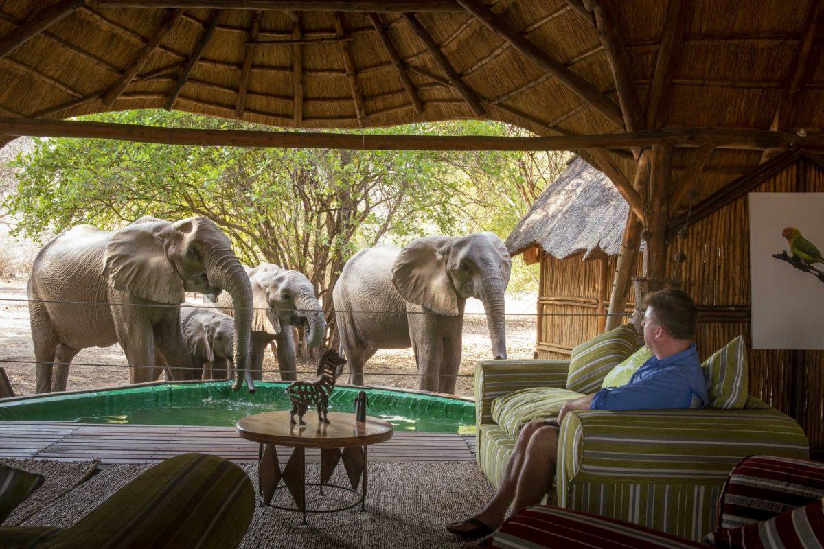 Zimbabwe: Open For Adventure Webinar with ATTA 6