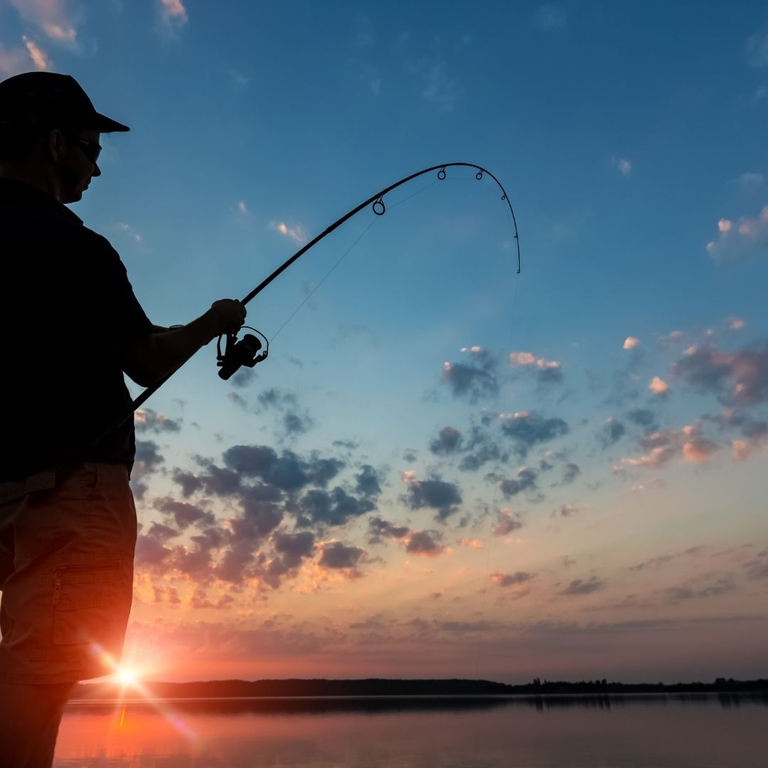 The Early Bird Catches the Worm, and Fish, on Lake Kariba 9