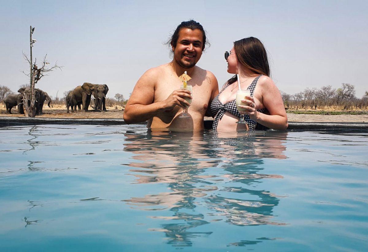 Elephants By Swimming Pool