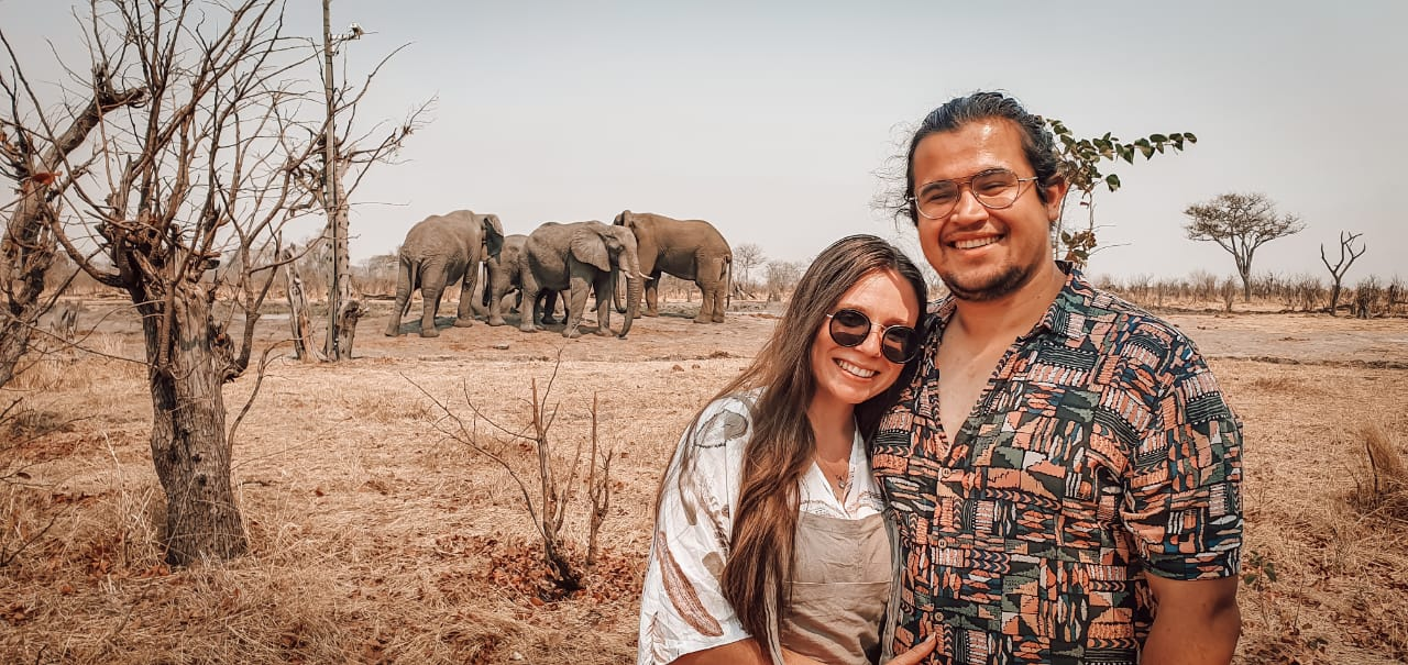Elephants By Pan